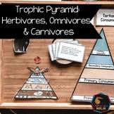 Trophic Food pyramid, herbivores, omnivores, carnivores