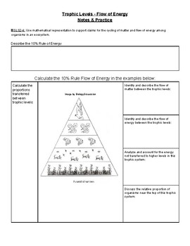 Energy Pyramids Practice Worksheet | Teachers Pay Teachers
