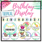 Tropical Birthday Display - Editable Name Signs