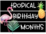 Tropical Birthday Months