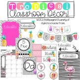 Tropical Classroom Theme Decor