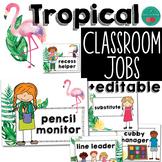 Tropical Classroom Jobs