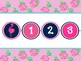 Tropical Flamingo and Pineapple Classroom Number Line Large 1-100 and 1-125