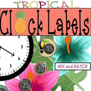 Tropical Clock Labels: Pineapples - Flamingos Classroom Theme Decor