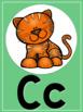 Tropical Colored Alphabet