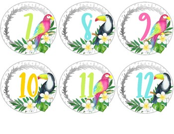 Tropical Crush Decor Collection: Number Labels