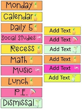 Tropical Daily Schedule Cards - EDITABLE