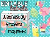 Tropical Flamingos Editable Labels | Name Tags | Mailbox | Sterilite Drawer