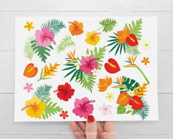 Tropical Flowers, Hibiscus, Plumeria, Monstera, Palm leaves, SVG