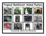 Tropical Rainforest Animal Posters