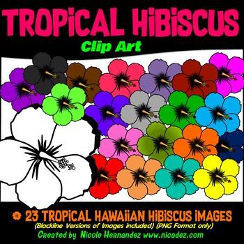 Tropical Hibiscus Clip Art for Teachers