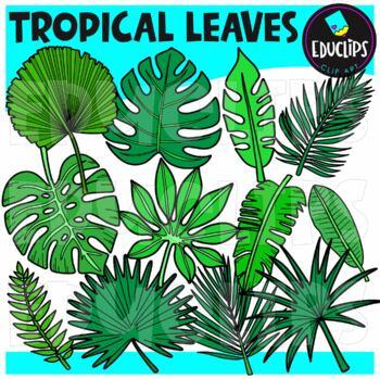 Tropical Leaves Clip Art Set {Educlips Clipart}
