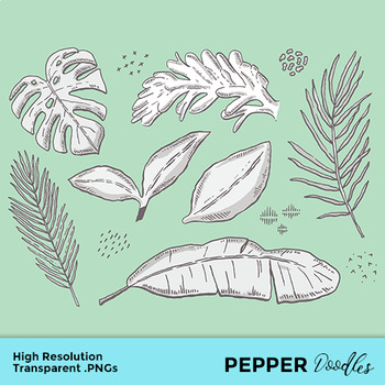 Tropical Leaves Doodle Clipart Transparent Pngs Eps By Pepper Doodles