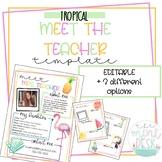 Tropical Meet The Teacher Templates! Editable + 3 Different Styles!