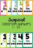 Tropical Number Display