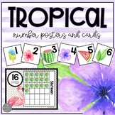 Tropical Number Posters 0-30, Number Line and 100 Chart