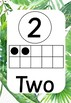 Tropical Numbers 1-20 Posters