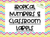 Tropical Numbers