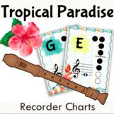 Tropical Paradise Recorder Charts