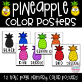 Tropical Pineapple Decor Color Posters