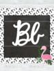 Tropical (Pineapples, Flamingos, Popsicles, more) Cursive Alphabet Posters