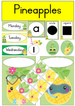 Tropical Pineapples Theme Classroom Recources