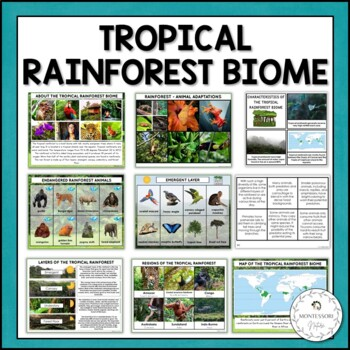 Tropical Rain Forest Biome | Nature Curriculum in Cards