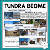 Tundra Biome - Characteristics, Animal and Plant Adaptations