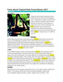 Tropical Rain Forest --  CLOZE Reading