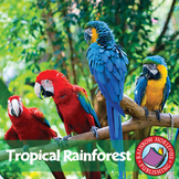 Tropical Rainforest Gr. K-2