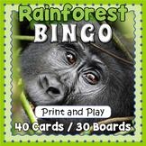 Tropical Rainforest Bingo Game