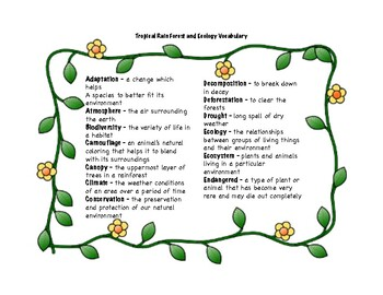 Tropical Rainforest, Ecology, and Conservation Vocabulary Words