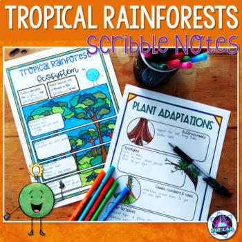 Tropical Rainforest Ecosystem Scribble Notes
