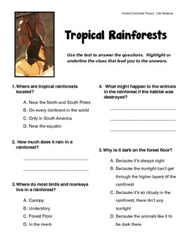 Tropical Rainforest Habitat