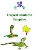 Tropical Rainforest Pamphlet