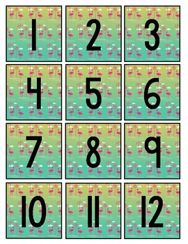 Tropical Rainforest Theme Calendar Set