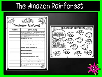 Tropical Rainforest Vocabulary PowerPoint and Matching Game