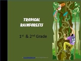 Tropical Rainforests (1st and 2nd Grades)