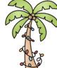 Tropical Santa Clip Art