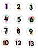 Tropical Theme Classroom Numbers 1-25
