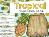 Tropical Theme Decor {Expansion Pack}