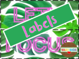 LABELS for Supplies and Bulletin Boards Posters – Tropical