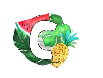Tropical Theme Word Wall