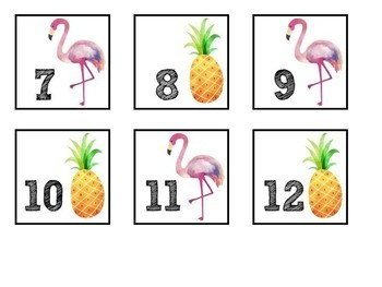 Calendar Set- Tropical Themed
