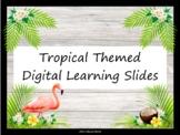 Tropical Themed Digital Learning Slides - Editable