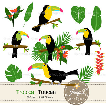 Tropical Toucan digital paper and clipart SET