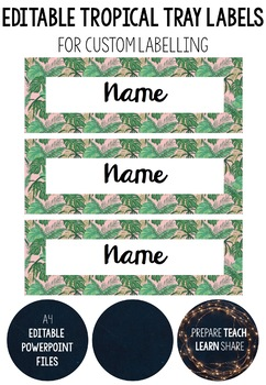 Tropical Tray Labels Worksheets & Teaching Resources | TpT