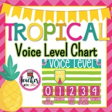 Tropical Voice Level Chart