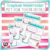Tropical Watercolor Meet the Teacher