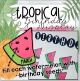 Tropical Watermelon Birthday Display (Editable Seeds)
